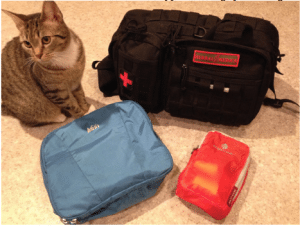 my three first aid kits and our kitten, glory.
