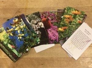 herbal card deck