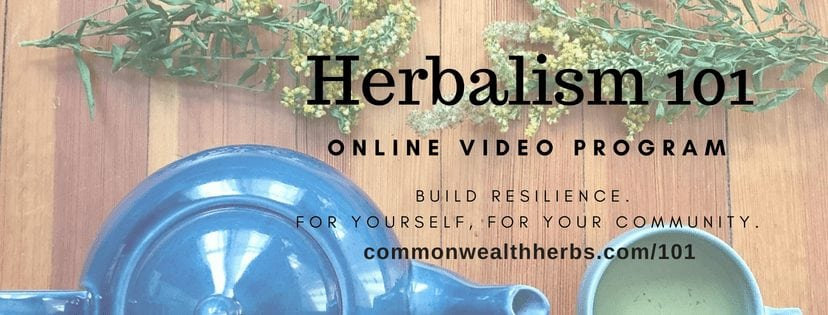 Herbalism 101 Online Video Program